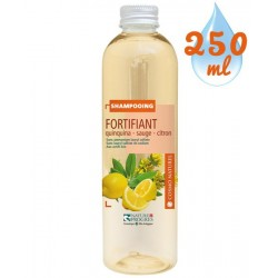 Shampooing Fortifiant Quinquina Sauge Citron – 250ml – Cosmo Naturel