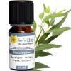 Offre de diffusion d'huiles essentielles - Eucalyptus radiata 10 ml