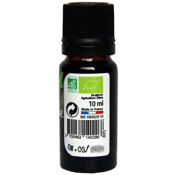 Gaulthérie wintergreen AB - Feuilles - 10 ml - Huile essentielle Direct Nature - Vue 2