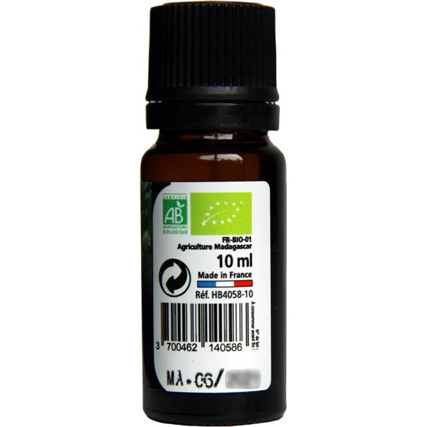 Niaouli AB - Feuilles - 10 ml - Huile essentielle Direct Nature - Vue 2