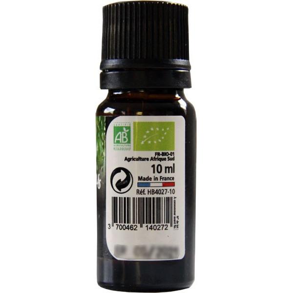 Eucalyptus radiata AB - Feuilles - 10 ml - Huile essentielle Direct Nature - Vue 2