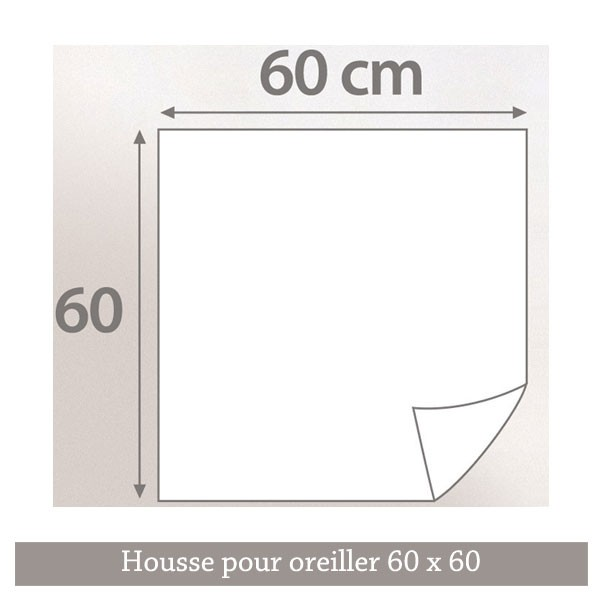 Housse de protection anti punaises de lit 60 x 60