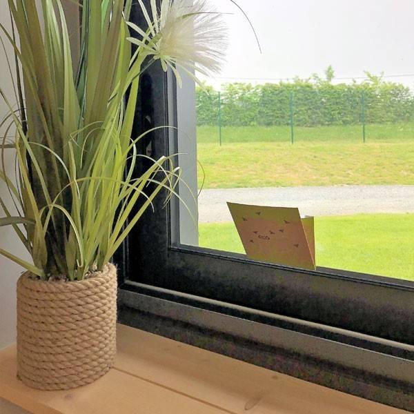 Piège à mouches fenêtre Ecofly - Vue d'ambiance 2