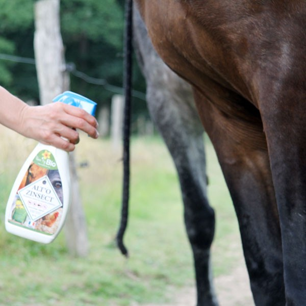 Application d'Alt'o Zinsect spray sur cheval - Vue 2