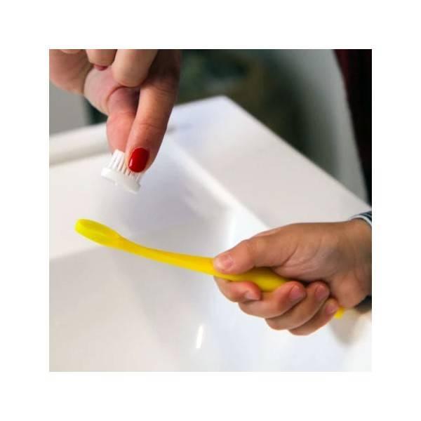 Changez la brossette de sa brosse à dents enfant Caliquo