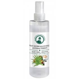 Spray hydroalcoolique antibactérien Aloe vera et orange - 100 ml - L'artisan Savonnier