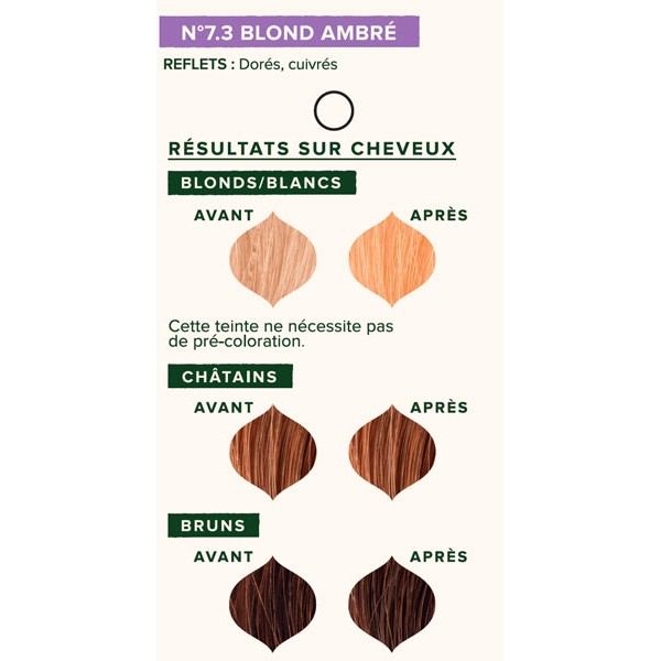 Nuancier individuel pour la coloration végétale Blond Ambré 7.3 - 100 gr - Emblica
