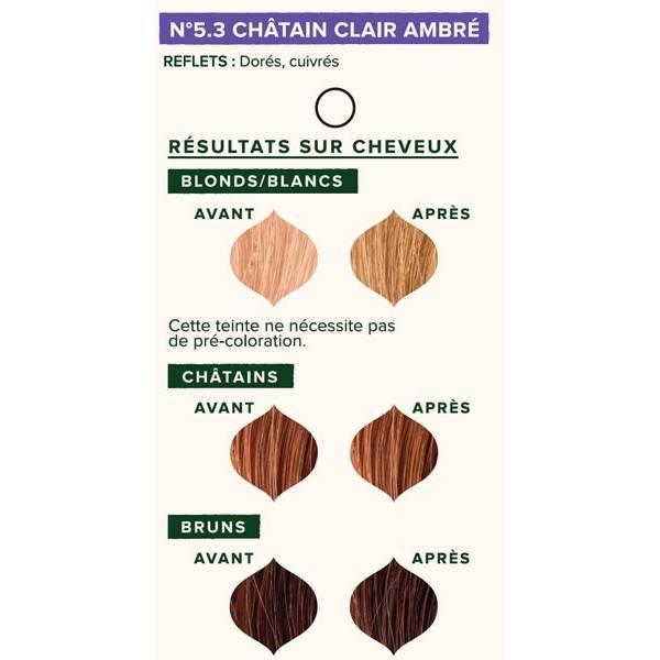 Nuancier individuel pour la coloration végétale Châtain clair ambré n°5.3 - 100 gr - Emblica