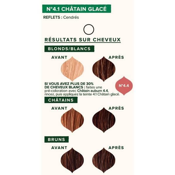 Nuancier individuel pour la coloration végétale Châtain glacé n°4.1 - 100 gr - Emblica