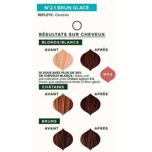 Nuancier individuel pour la coloration végétale Brun glacé n°2.1 - 100 gr - Emblica