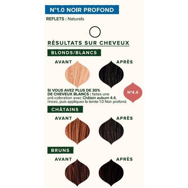 Nuancier individuel pour la coloration végétale Noir profond n°1.0 - 100 gr - Emblica