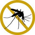 Anti-moustiques bio