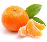Mandarine verte - Citrus reticulata blanco