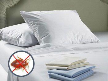 Comment choisir sa housse anti-punaises de lit ?