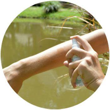 Application d'un répulsif à base de PMD ou citriodiol