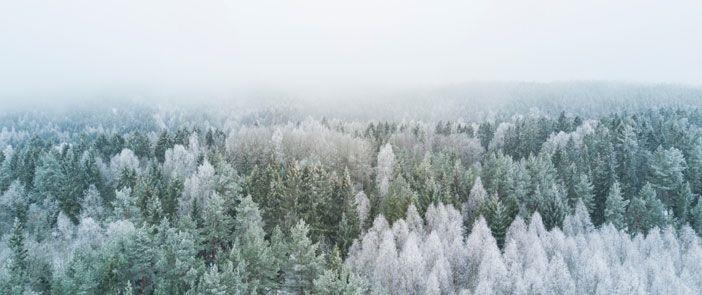 Massage du corps à base d'une huile de soins bio contre l'inconfort hivernal