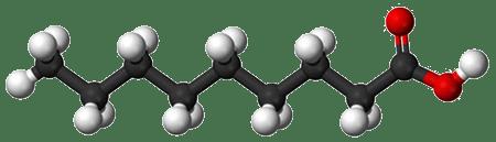 La molécule d'acide nonanoïque