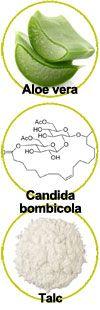 Actifs Aloe vera, Candida bombicula et talc