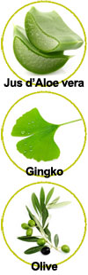 Actifs pour le shampooing Gingko Olive