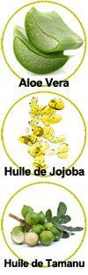 Actifs Aloe Vera, huile de Jojoba et huile de Tamanu