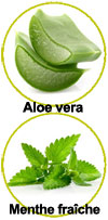 actifs gel douche Menthe fraîche Aloe vera bio