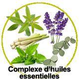actif complexe d'huiles essentielles