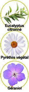 actifs Eucalyptus citronné, pyrèthre végétal et géraniol