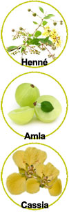 Actifs Henné, Amla et Cassia