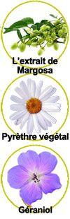 actifs Extrait de Margosa, pyrèthre végétal et géraniol