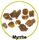 Zoom sur l'actif myrrhe