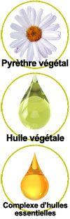 actifs Pyrèthre végétal, huile de sésame et complexe d'huiles essentielles