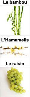 Actifs poudre de bambou, hamamelis et pépins de raisin