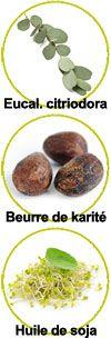 actifs lotion anti moustiques Aries