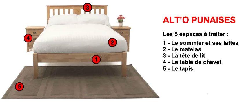 Alt'O Punaises, espaces à traiter contre la punaise de lit