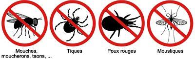 ALTO'ZINSECT : insectes cible
