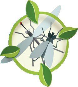 Aries, lutter naturellement contre les insectes volants