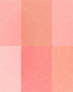 Blush multi effets 01 Coral Sante