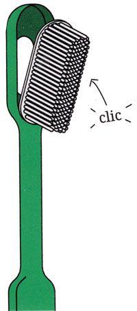Brosse à dent écologique à tête rechargeable Caliquo