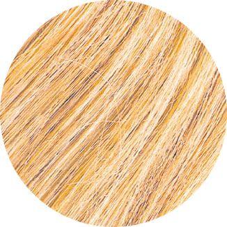 Rendu couleur pour la coloration végétale Blond Ambré Emblica