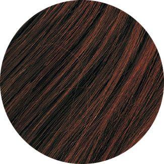 Rendu couleur pour la coloration végétale Brun glacé Emblica