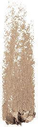 Rendu couleur pour le crayon à sourcils N°01 Blonde Sante