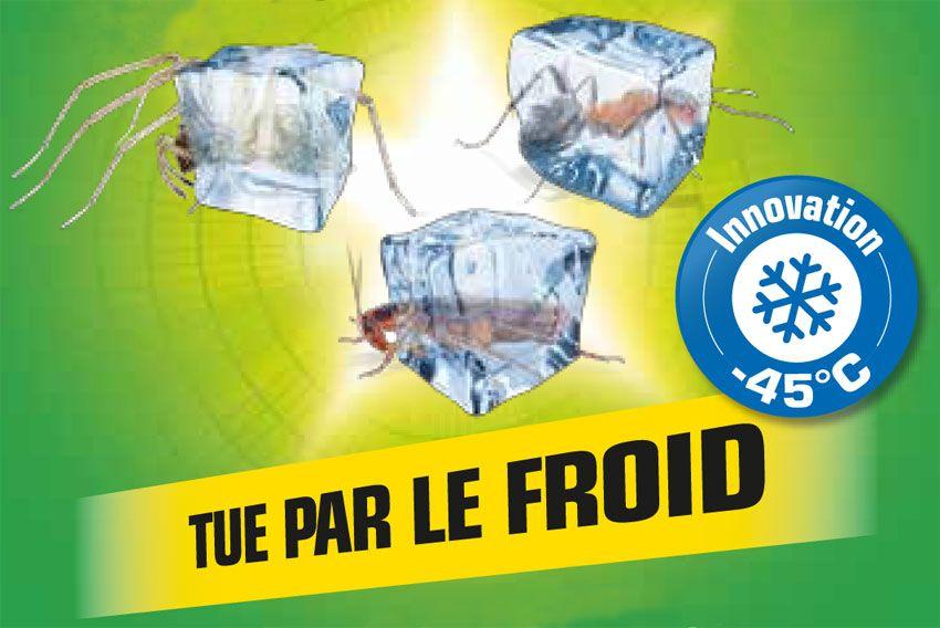 Insecticide effet givrant Kapo Vert