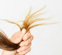 Avoir les cheveux secs