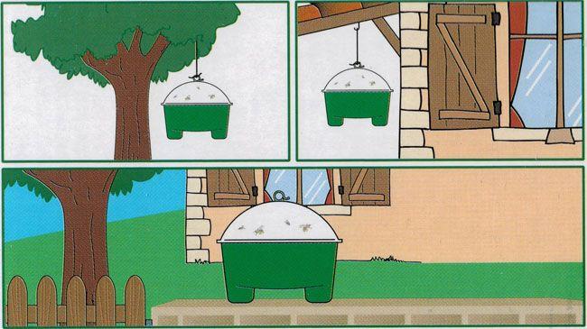 Quelques exemples d'utilisation du piège à guêpes et frelons