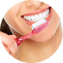 Se brosser les dents au quotidien