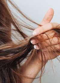 Soin des cheveux avec l'après shampooing ortie bio Logona