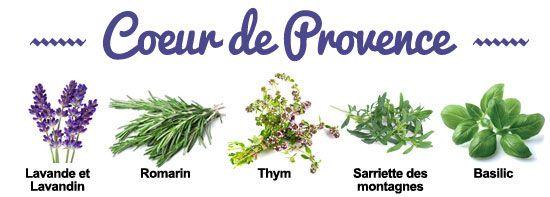 Composition de la synergie Coeur de Provence
