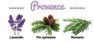 Composition de la synergie Provence