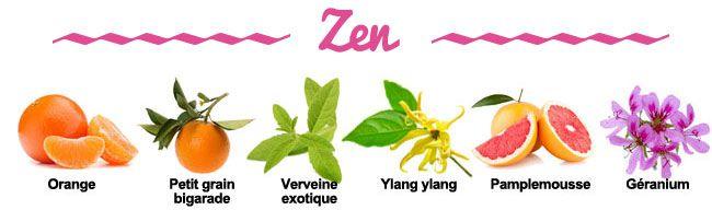 Composition de la synergie Zen